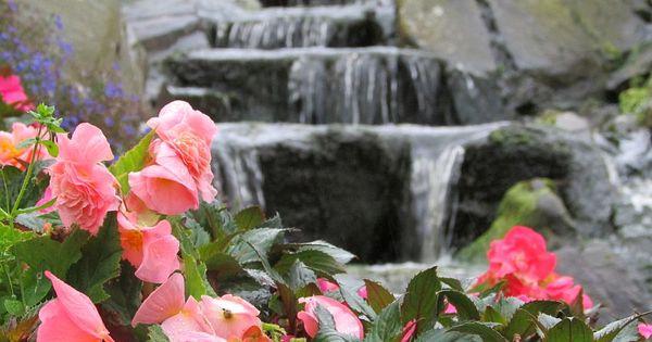 """Logbuch VII: Stavanger: Das Paradies auf Erden in der Einsamkeit der norwegischen Fjorde: """"Flor og Fjære"""" ☼ Tropische Gärten – Und DAS in Skandinavien ☼"""
