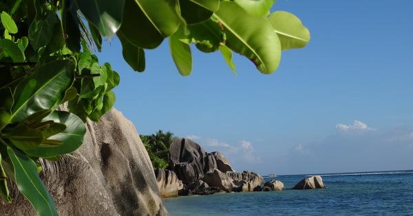 """Transmauritius 2019 (Teil 7) // Seychellen der 1. Tag -""""Perlen der Seychellen, La Digue"""" // Der etwas andere Reisebericht..., Fakten und Kurioses // -dies sind die Reiseerlebnisse des Teddy Kaufhof..."""