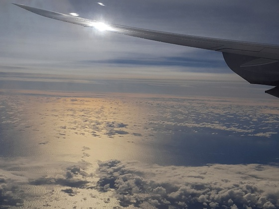 Flug nach LA