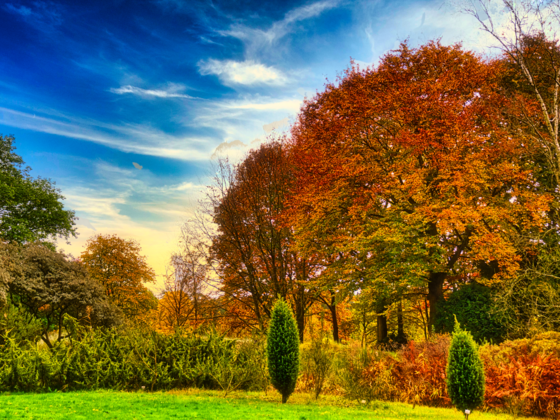 Herbstfarben Oktober 2020