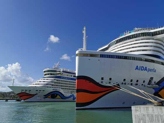 Aida perla trifft die Aida Luna in der Karibik