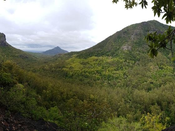 Black River Gorges, Blick während der Wanderung