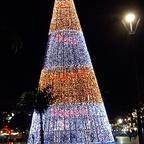 Madeira Weihnachtspyramide (ca. 30 meter hoch )