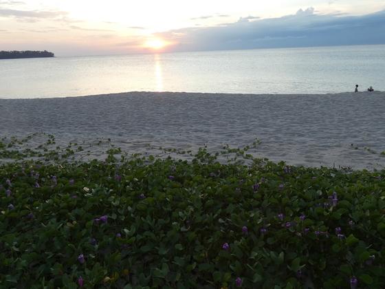 Bang Tao Beach - Phuket