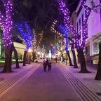 Madeira Weihnachtsbeleuchtung