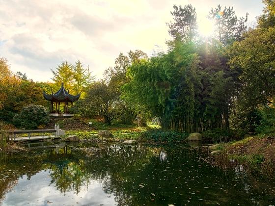 27.10.2020 japanischer Pavillon im botanischen Garten Klein Flottbek
