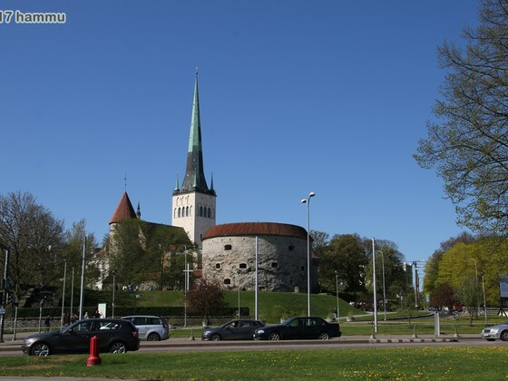 AIDAmar - Ostsee 20.05.-27.05.17 - 03 Tallinn