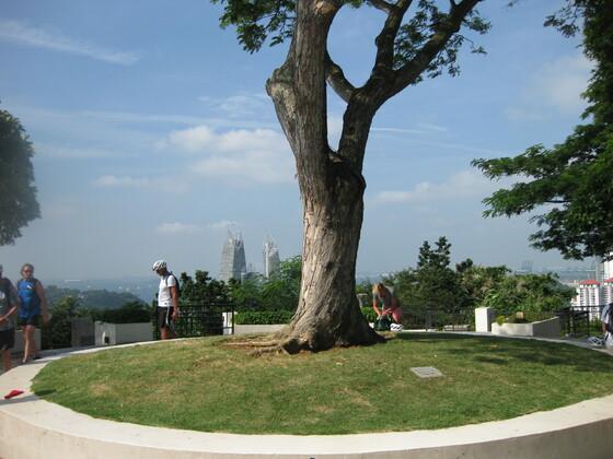 Singapur Impressions - Soft/ Aktiv Biking - Der einzige Hügel in Singapur