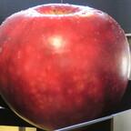 Big Apple historisches Museum Odense