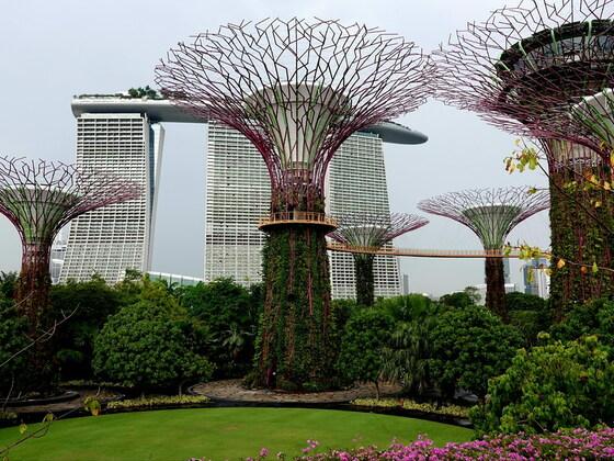 Gardens by the Bay, Singapur.