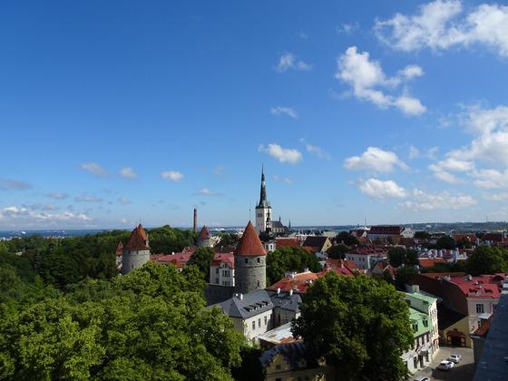 8_Tallinn von oben