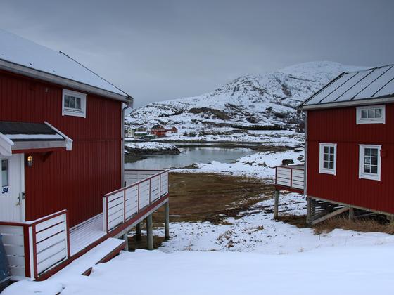 Schwelge in Erinnerungen : AIDAcara Winter im hohen Norden, Highlight-Reise mit Wiederholungs-Suchtgefahr ;-)