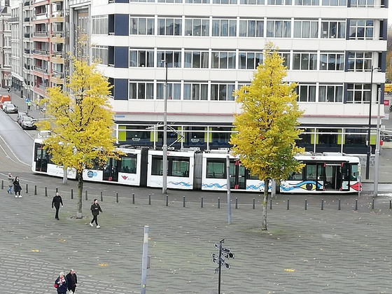 Neulich in Rotterdam...
