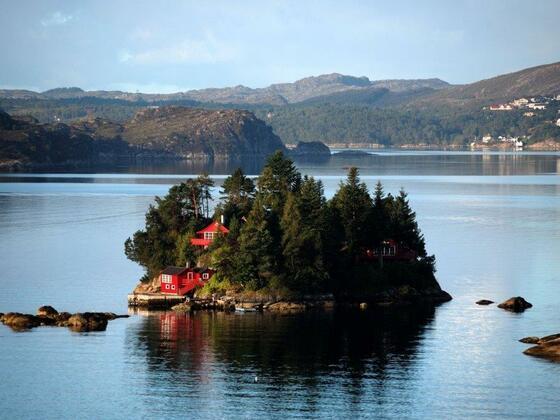 Morgengruß im Byfjord