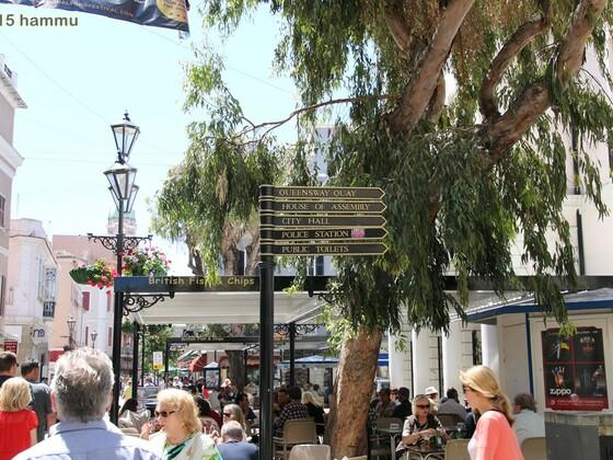 AIDAsol - Westeuropa 26.04.-10.05.15 - 07 Gibraltar
