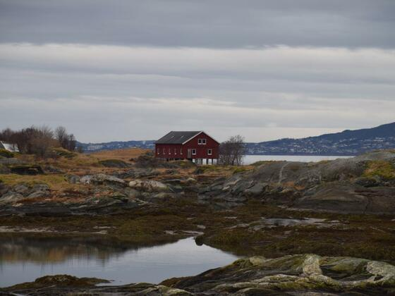 Saltstraumen