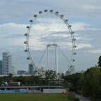 Singapur Flyer (Riesenrad)