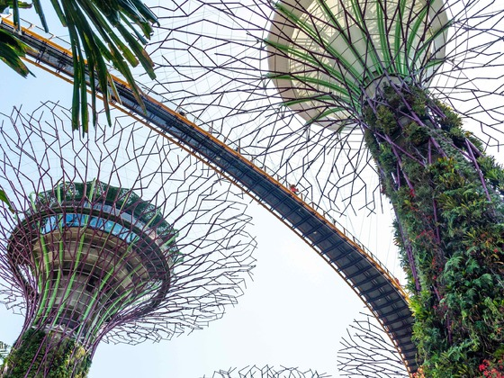 Singapur - Gardens by the Bay2