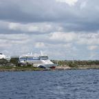 Isla Catalina (6)