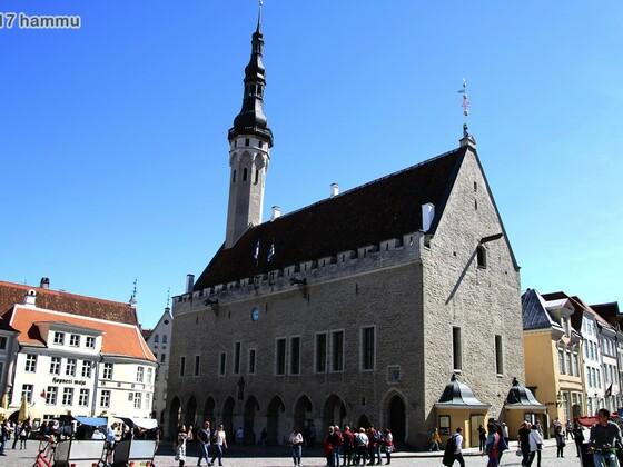 AIDAmar - Ostsee 20.05.-27.05.17 - 08 Tallinn