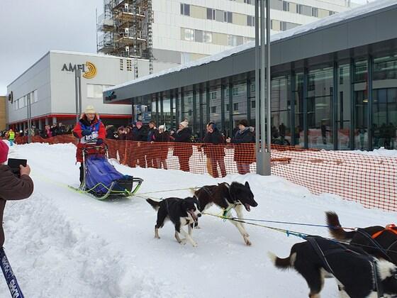 Huskyrennen Alta