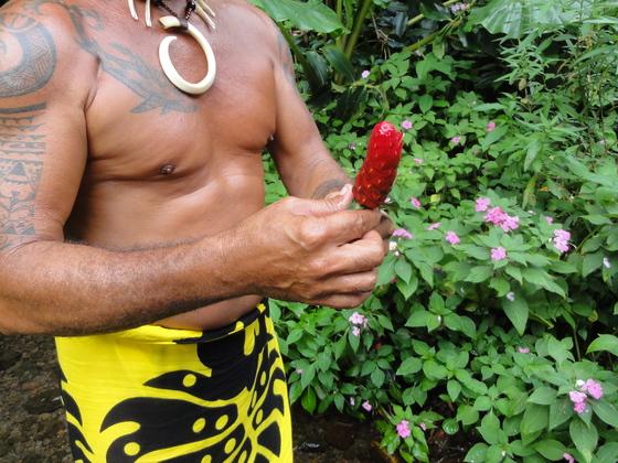 Papeete Ausflug mit Taifa
