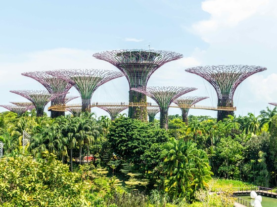 Singapur - Gardens by the Bay1