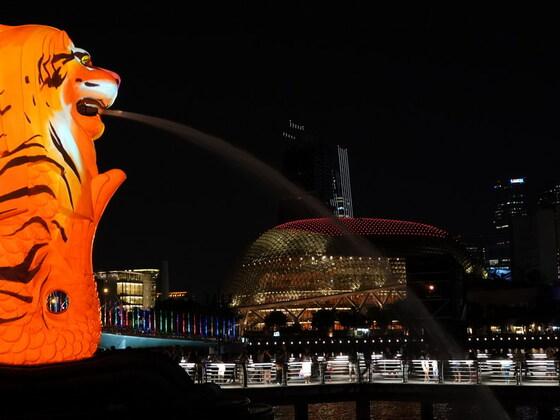"""""""i light singapur"""" hieß das Licht-Spektakel 18.02.19"""