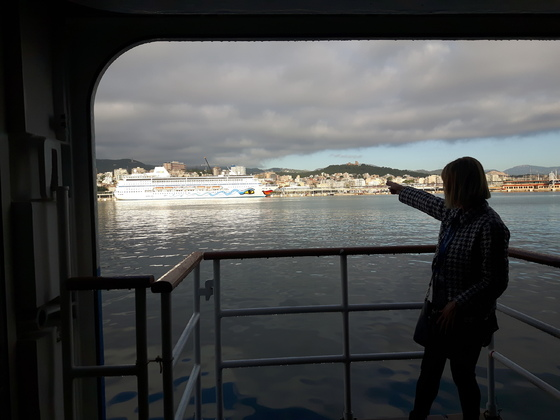 Schaut mal her, da ist die kleine Mira im Hafen von Palma de Mallorca